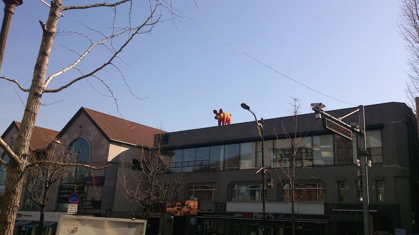 Хрюшка на крыше
