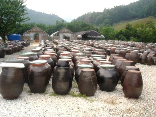 Глиняные горшки для кимчи