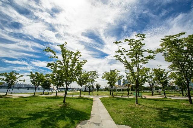 Парк Ёыйдо