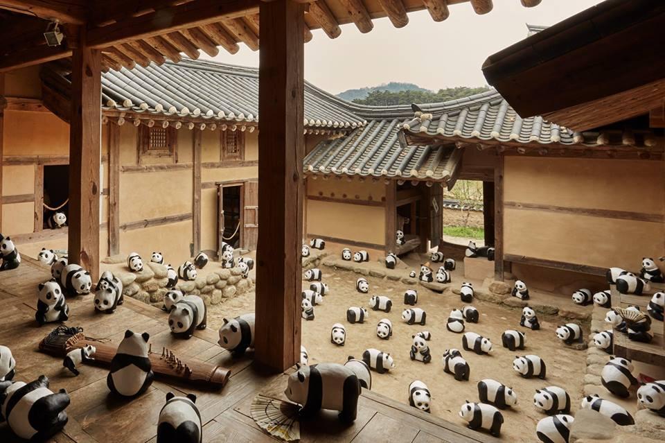 Сеул, панда