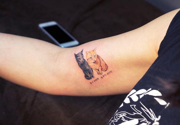 Татуировка коты