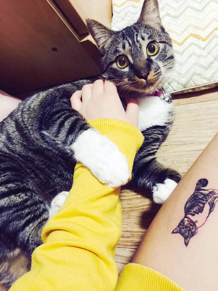 Татуировка кота на ноге