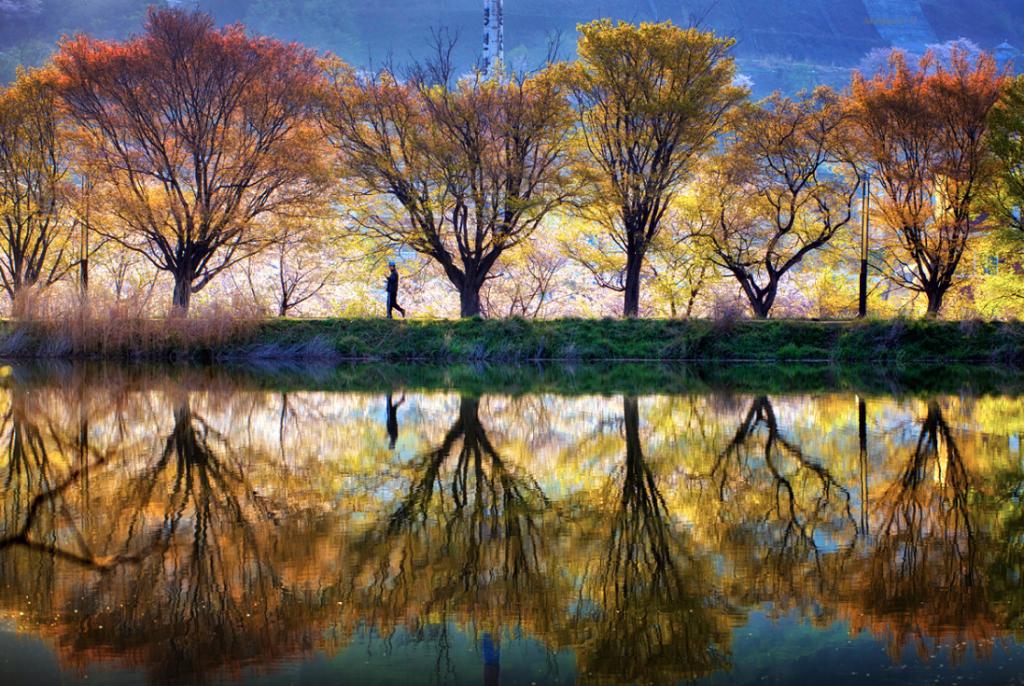 Зеркальное отражение фото, Корея