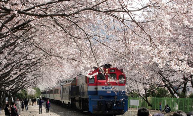 Поезд в Чинхэ