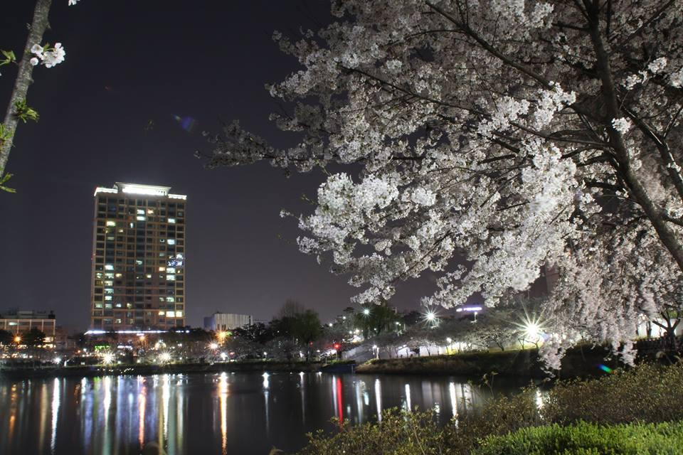 В Корее безопасно гулять поздним вечером