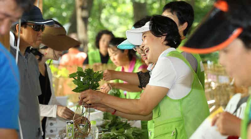 Фестиваль женьшеня в Корее
