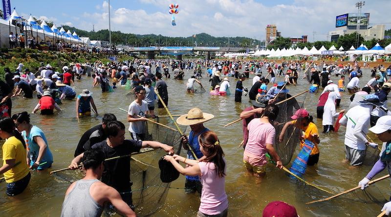 Фестиваль рыбы в Корее