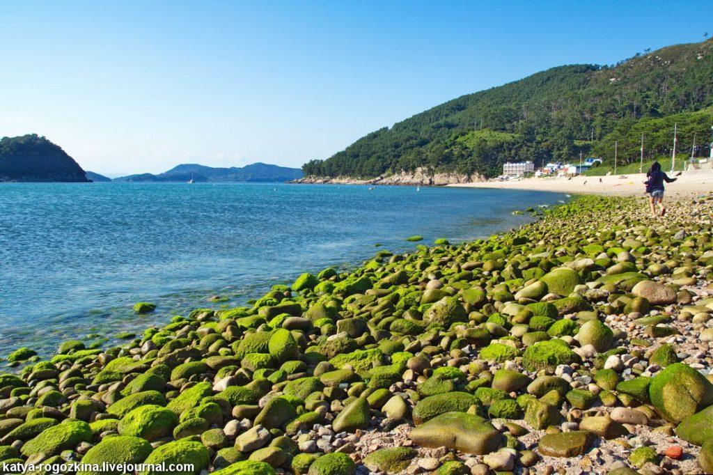 Корейское море